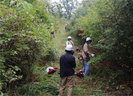 植林のための道づくり 2